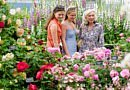 Chelsea Flower Show : Top Things To Do