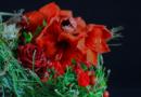 Gregor Lersch | Bouquet with red flowers