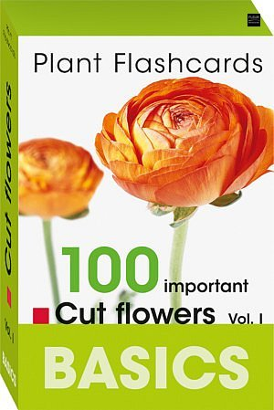 Plant flashcards cut flowers basics Bloom's learn easily botanical names plant families classification facts florist techniques blooming period availability decoration Fleur Magazine Fleur Creatif information flower shop boutique proteaceae