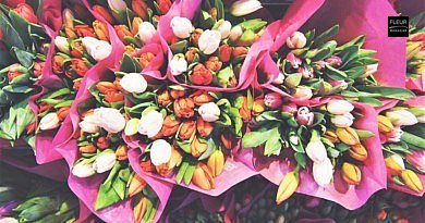 DIY | A Colourful January With Blooming Tulips