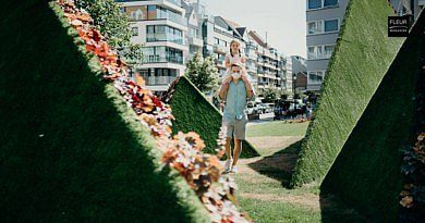 Summer Flower Magic by Daniel Ost