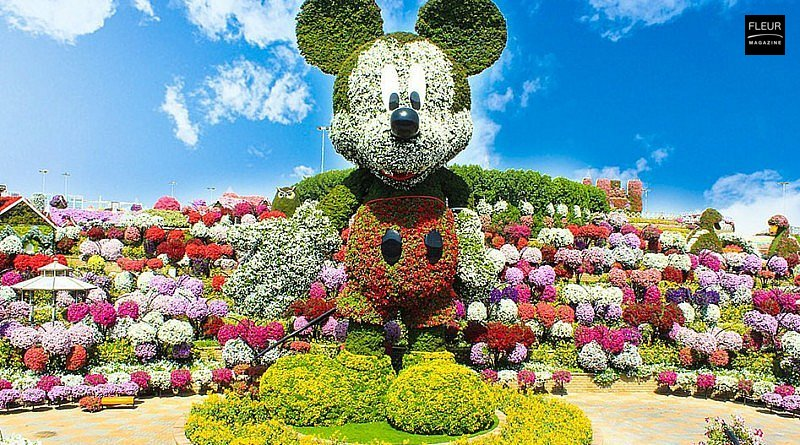 Dubai Miracle Garden floral event Dubai flower arrangement floral art flower lovers visit flower designs mickey mouse floral clock floral teddy bear floral lake floral plane flower creations floral creations inspiration colours tips tricks floral magazine florists fleur creatif magazine