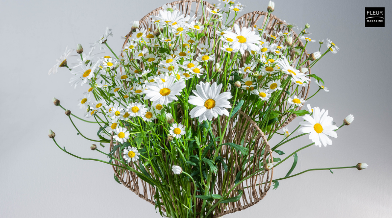 Spring flower design DIY by FLEUR florist Moniek Vanden Berghe. 'Marguerite fans', a design with sparkling marguerites. Try this DIY, flower lovers!
