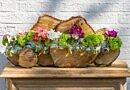 Blooming spring DIY | Sturdy versus fragile