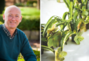 Floral artist Geert Pattyn has been at Fleur since the beginning
