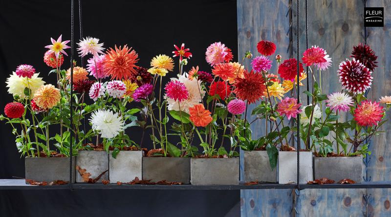 Fleur Créatif Magazine: 3 quick and easy DIY ideas with autumn flowers