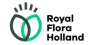 Royal Floral Holland
